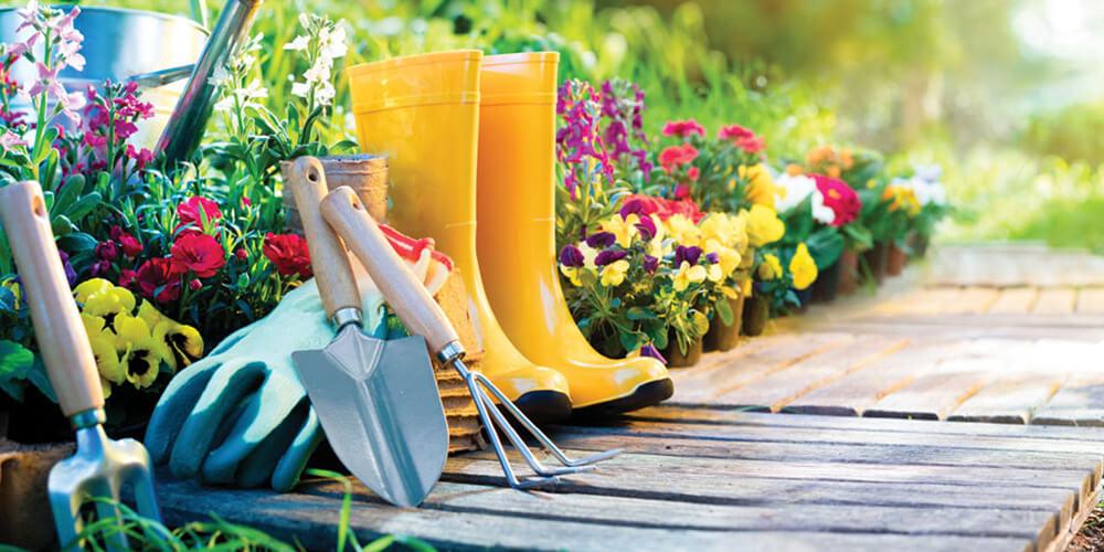 Notre jardinerie fait fleurir vos idées   Carrefour